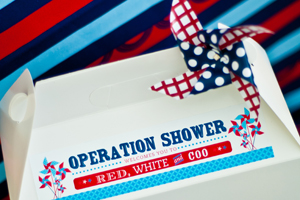 Operation Shower Peek