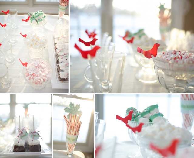 winter-wonderland-hot-cocoa-sticks-bar-mint-candy-marshmallows-chocolate-ganache-glass-mugs-red-birds-crushed-mint