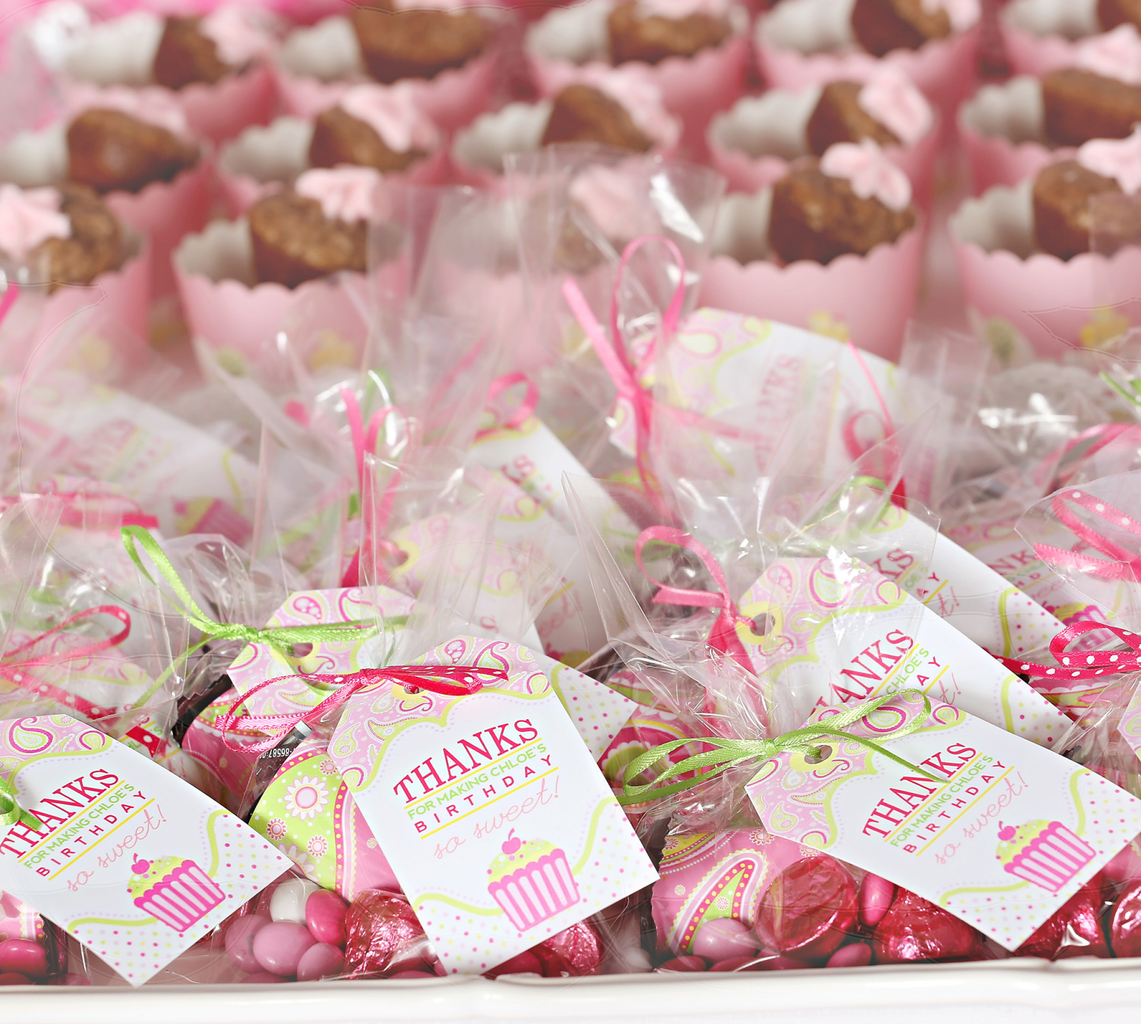 Party Favor Ideas: A Cupcake Themed 1st Birthday Party With Paisley And Polka
