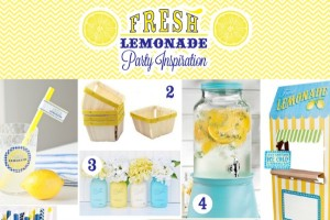 lemonade-inspiration-01