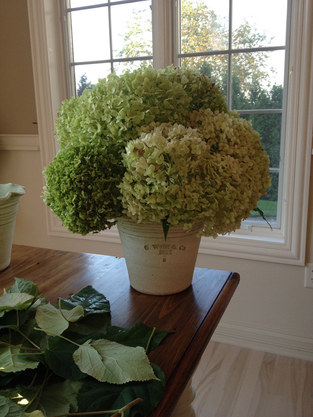 Diy how to create dried hydrangea arrangements for home