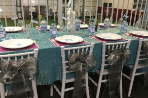 Cute satin bows on chairs at Frozen Party