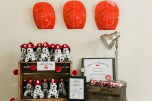 Dalmatian Adoption Center as party favor for guests at Firetruck themed party