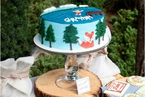 Lake Party Cake - great for outdoor and camping parties as well