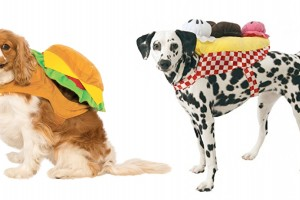 Soda shop pet costumes